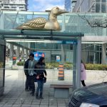custom 3d transit shelters by media resources